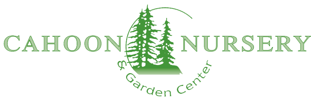 Cahoon Nursery and Garden Center