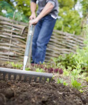 Soil & Soil Amendments